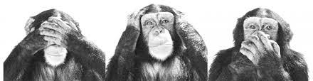 cropped-see-no-evil-hear-no-evil-speak-no-evil21.jpg | Questioning My  Metacognition