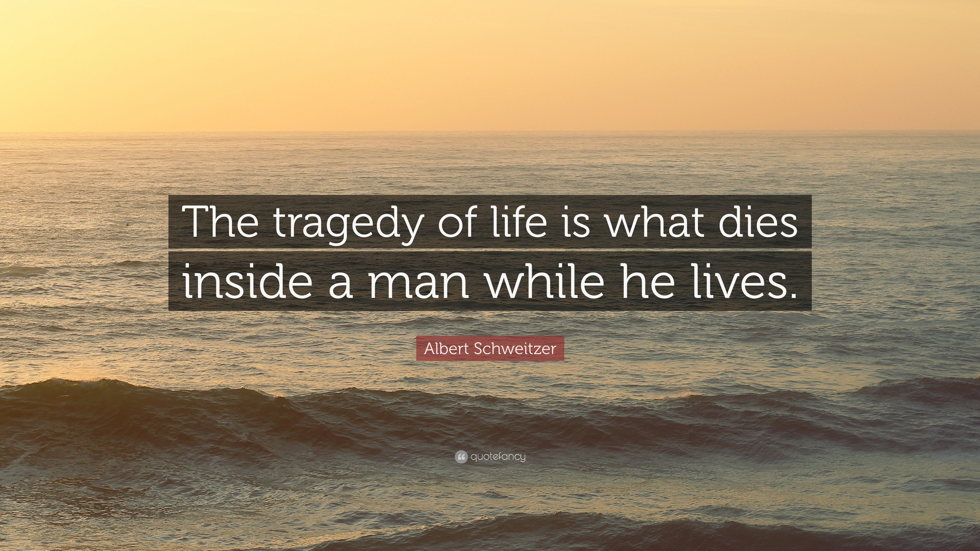 1870459-Albert-Schweitzer-Quote-The-tragedy-of-life-is-what-dies-inside-a.jpg