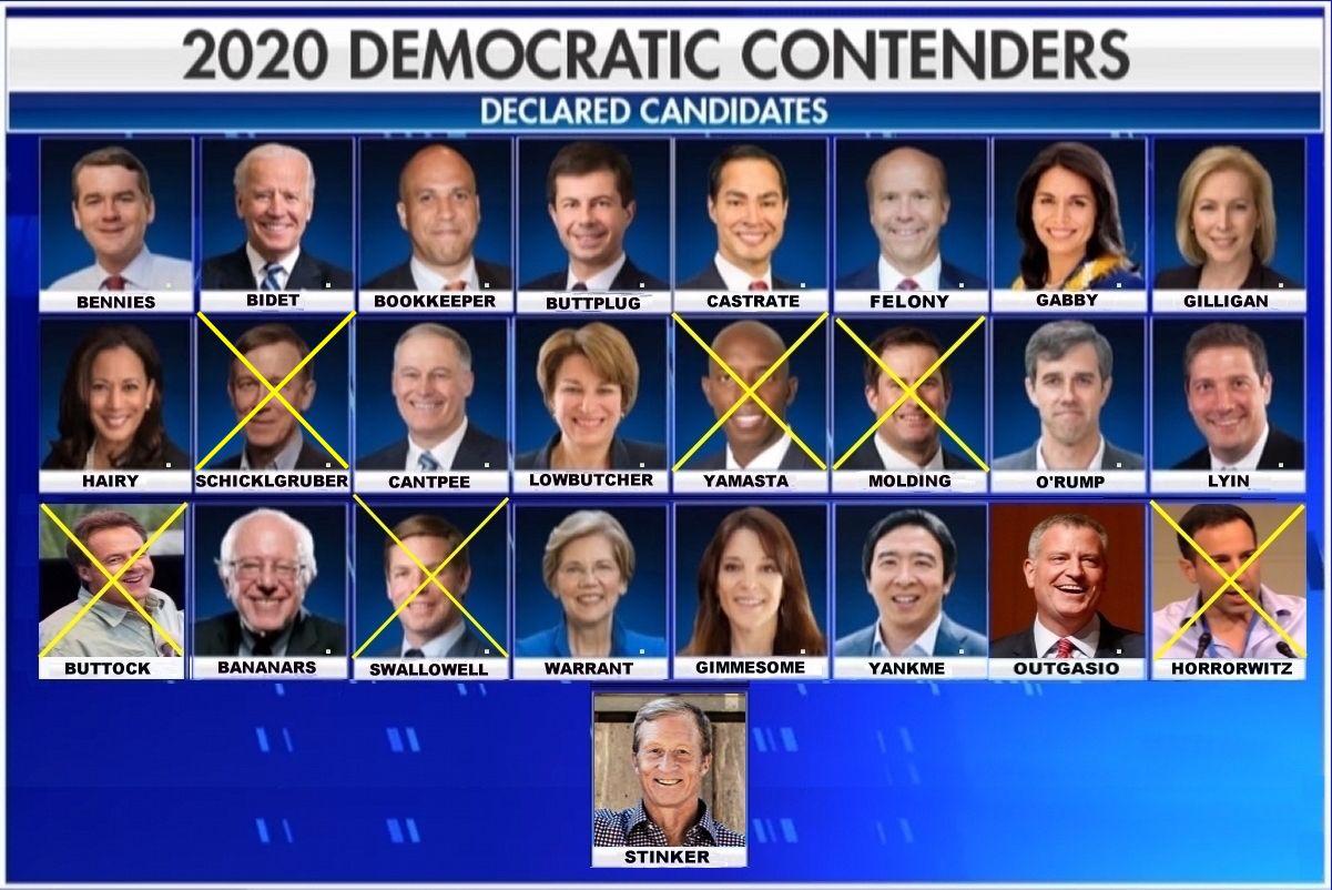 2020 Dem Hopefuls.jpg