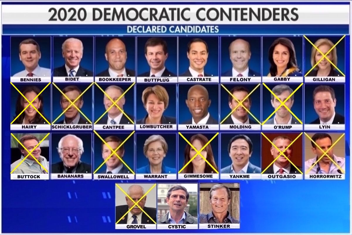 2020 Dem Hopefuls Main.jpg