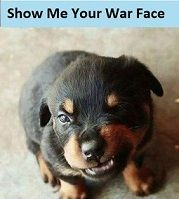 _____Show me you War Face.jpg