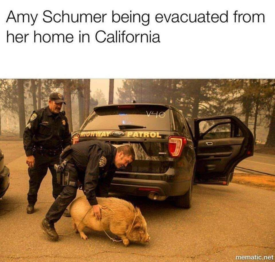 amy schumer.jpeg
