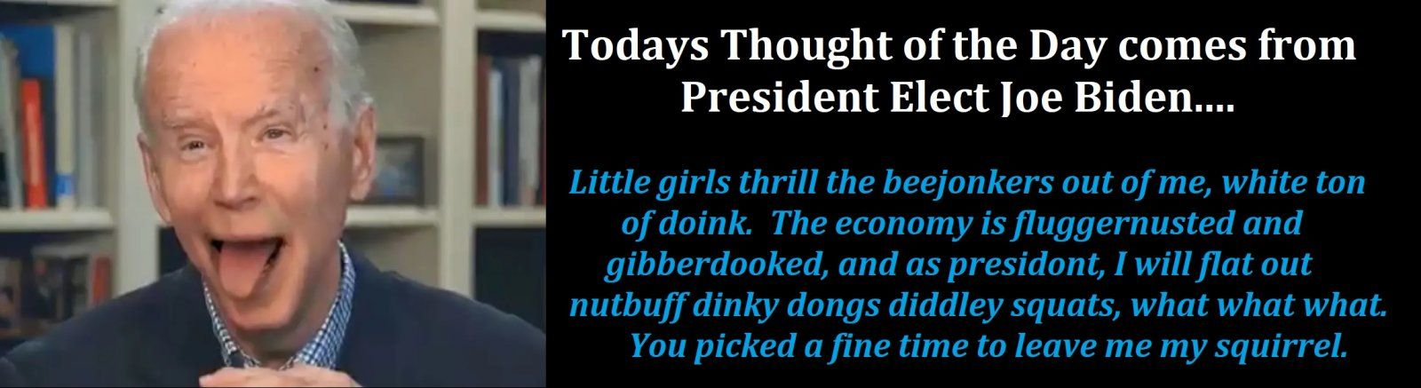 Biden thought of the day.jpg