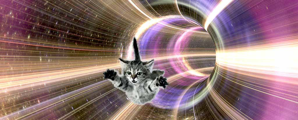 black_hole_horizon_cat.jpg