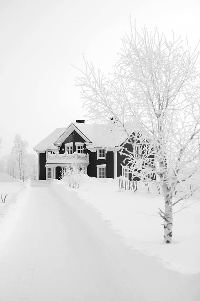 blanc1.jpg