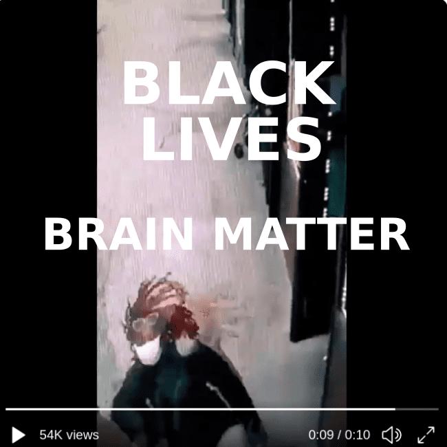 brain matter.png