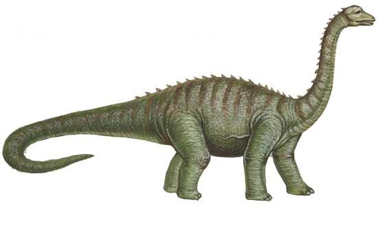 Bruhathkayosaurus.jpg