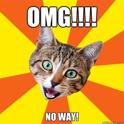 Cat OMG No Way.jpg