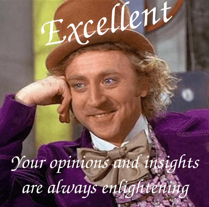 condescending-wonka-Excellent enlightening opinions.png
