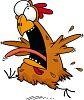 crazy-chicken-.jpg