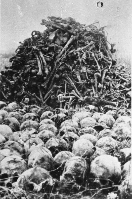 df53c8037d80d6d75e34a8b1de819b34--holocaust-survivors-the-holocaust.jpg
