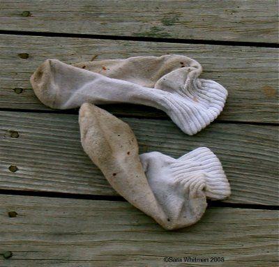 dirty sockz.jpg