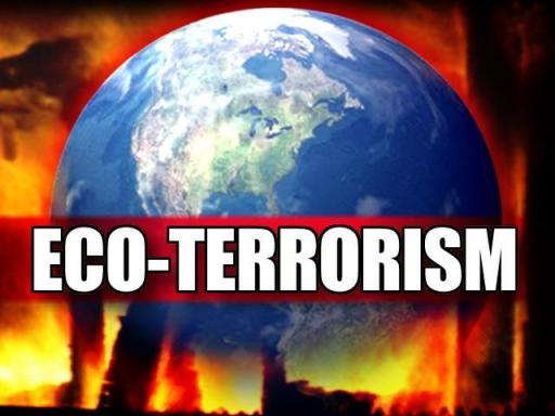 eco terrorism This week vancouver arsonist rebecca rubin was sentenced to five years in jail, the end of a turbulent personal saga involving a love of.