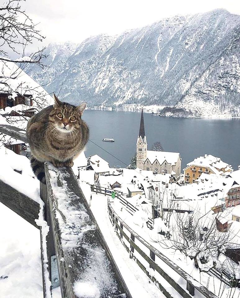 Hallstatt Austria.jpg