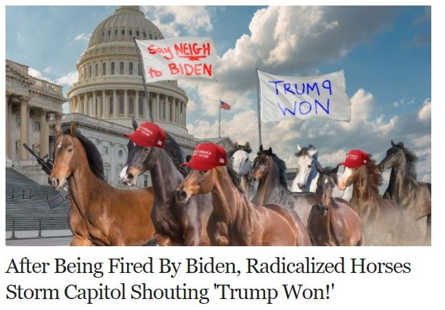 horses revolt.jpg
