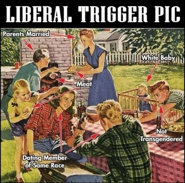 liberal-trigger-picture.jpg