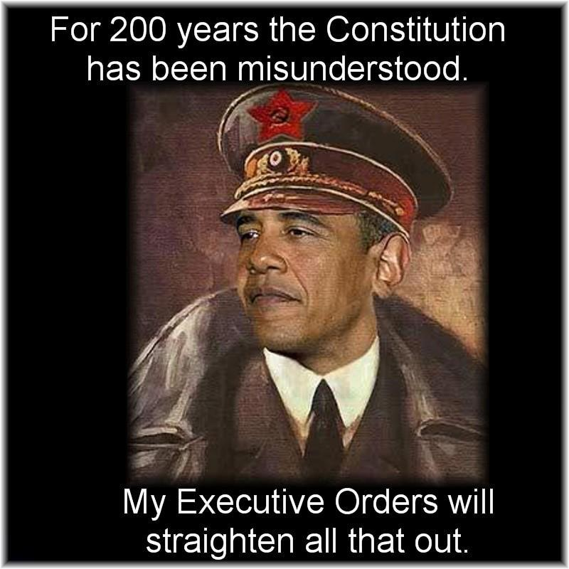 Image result for image of obama as a dictator