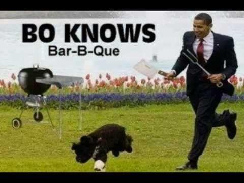 obamaeatsdogs.jpg