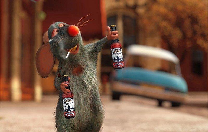 Rat-Drinking-Beer-44500-800x509-1.jpg