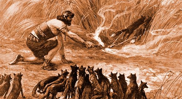 Samson-brush fires.PNG