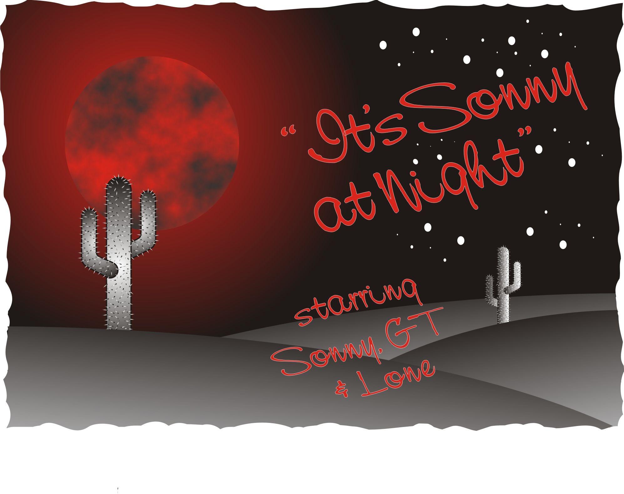 Sonny at night.jpg