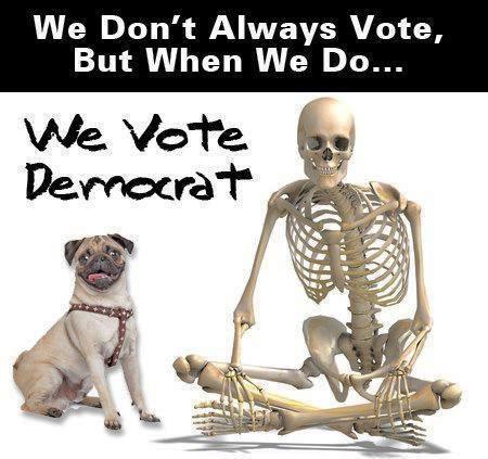 votedemocrat.jpg