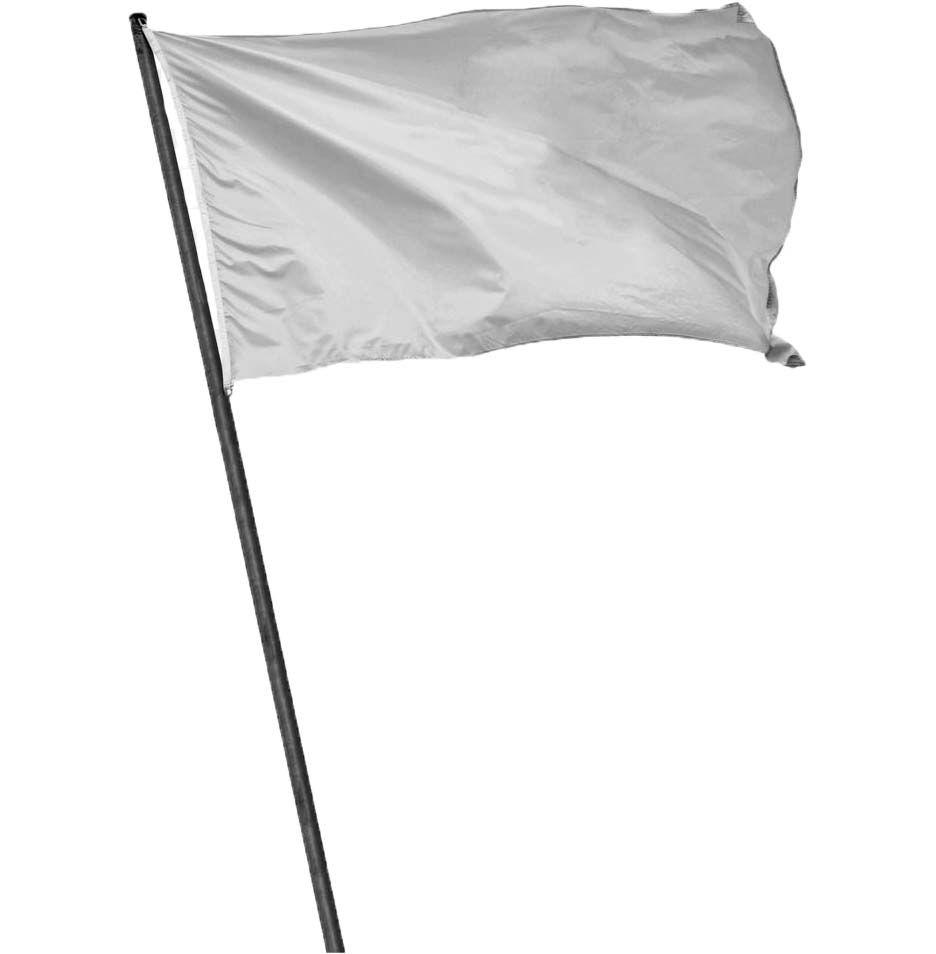 white flag 2.jpg