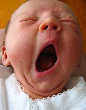 yawn.jpg
