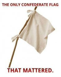 $only confederate flag that mattered.jpg