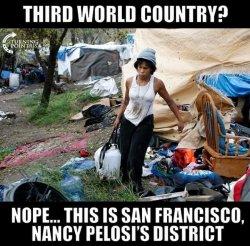 Pelosi's America.jpg