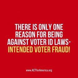 1087 Voter Fraud Myth.JPG