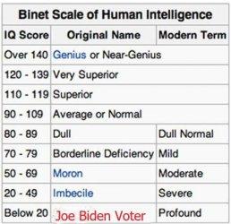 Binet-Simon_scale.jpg