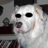 BlindBoo