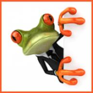 Frog_Jamas