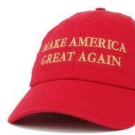 Sapient MAGA Hat