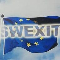 The European with joy